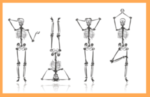 yoga skeletons