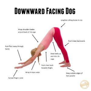 SITS downdog