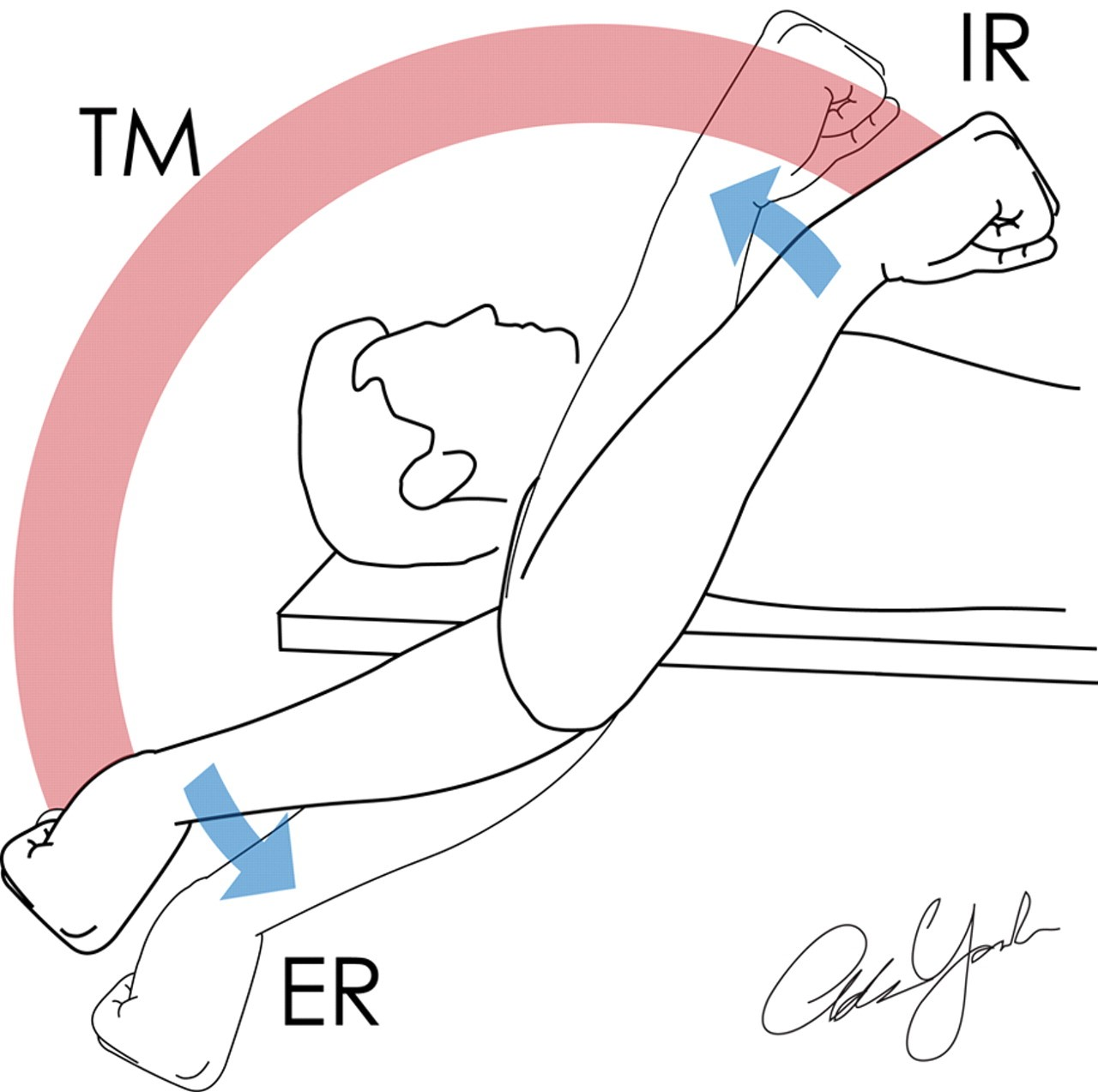 In athletic training we call internal and external rotation the total